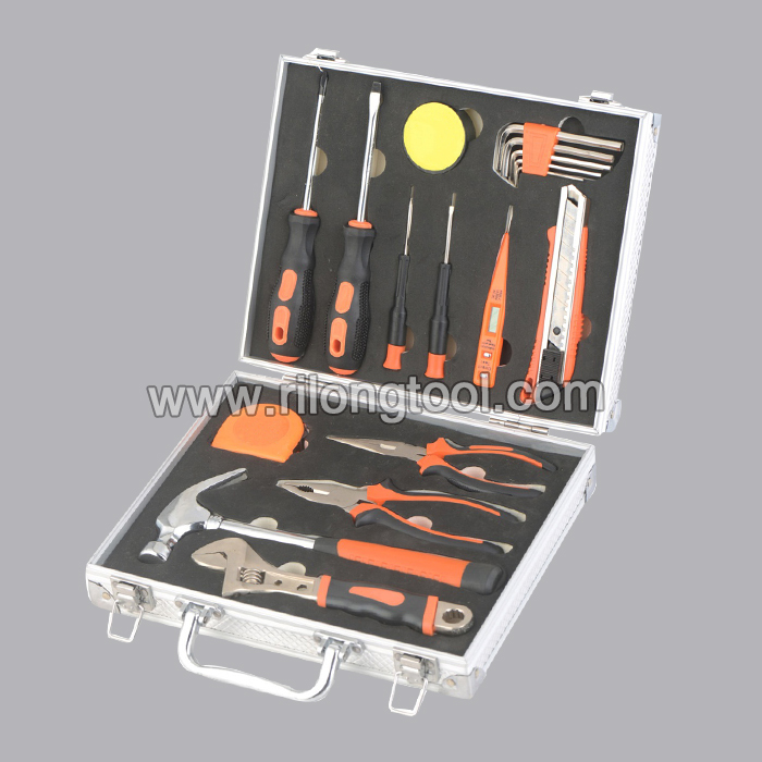 17pcs Hand Tool Set RL-TS038